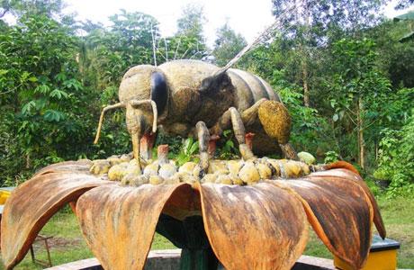 Agro Tawon Rimba Raya - malang.merdeka.com