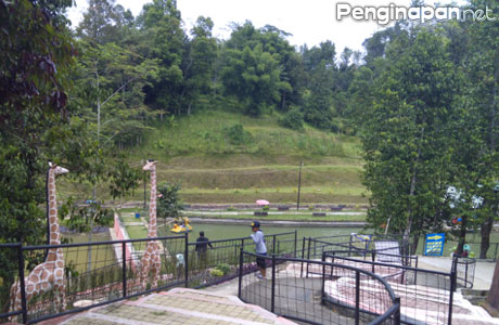Batu Apung Alam Hijau Wanayasa - bilik-purwakarta.blogspot.co.id