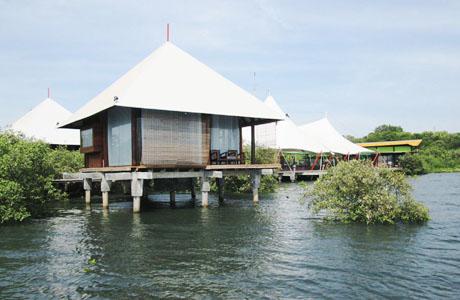 Beejay Bakau Resort - beejaybakauresort.com