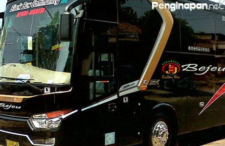 Bus Bejeu - www.bosbis.com