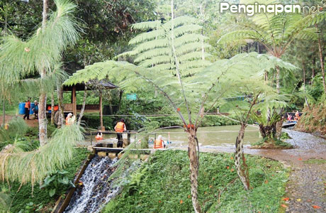 Camp Hulu Cai Ciawi - (Sumber: panoramio.com)