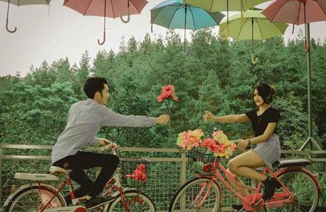 Dago Dream Park - ulinulin.com
