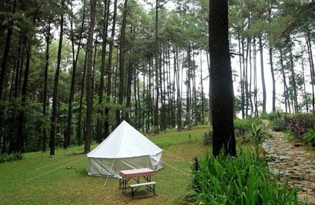 Glamping di Gunung Pancar - travel.kompas.com