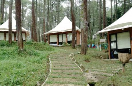 Grafika Cikole Lembang - jabar.tribunnews.com