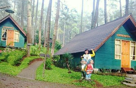 Grafika Cikole Lembang - www.tripadvisor.co.id
