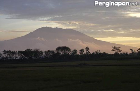 Gunung Argopuro - www.catatanhariankeong.com