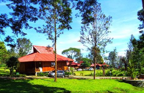 Gunung Mas Tea Estate - www.tettytanoyo.com