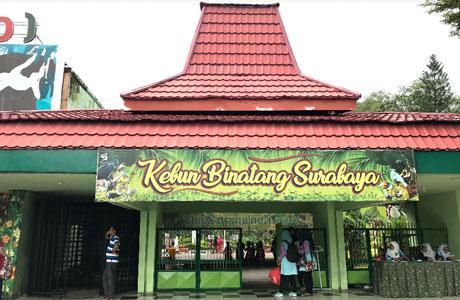 Kebun Binatang Surabaya - @ARIeF Anshori