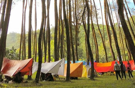 Ledok Ombo Camping Ground - www.malangtimes.com