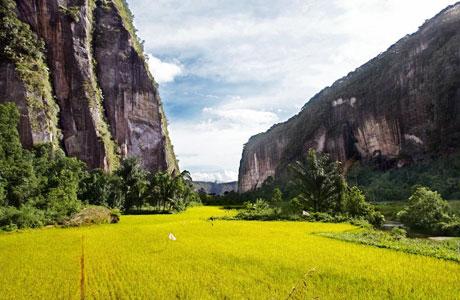 Lembah Harau - www.pegipegi.com