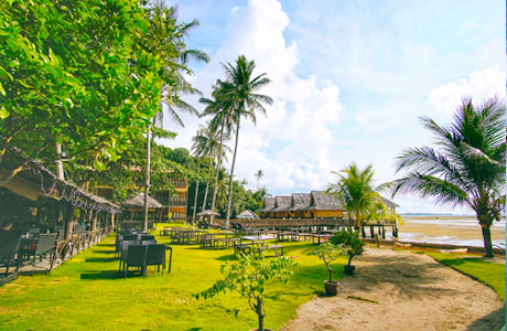 Akomodasi berjajar di pesisir Pantai Trikora (sumber: pergidulu.com)