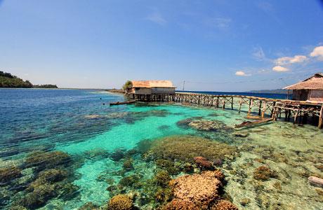 Hamparan koral laut dangkal Pulau Togean (sumber: pesonaindonesia.com)