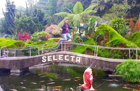 Selecta Batu Malang - wisatapedi.com