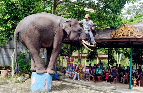 Taman Wisata Bumi Kedaton - www.jejakpiknik.com