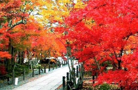 Taman Xiangshan - www.cheria-travel.com