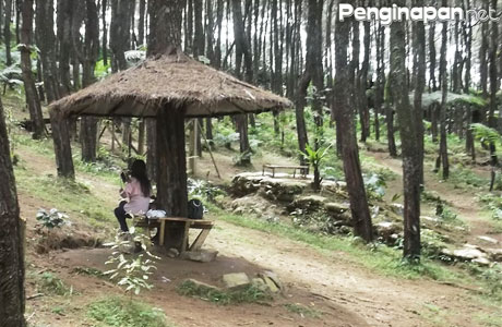 Ujung Aspal Wanayasa