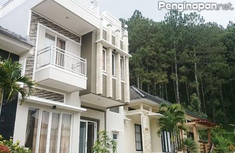Villa Pinus 8