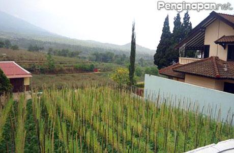 Pemandangan alam dan lingkungan di sekitar Villa Selekta