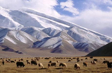 Xinjiang - osiaeirinigr.blogspot.co.id